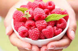 Losing fat With Raspberry ketones